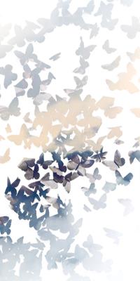 envol et essaim… papillonner